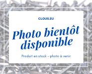 Pointe acier trempé Tête plate  coupe franche Ø 2 mm (1 kg)